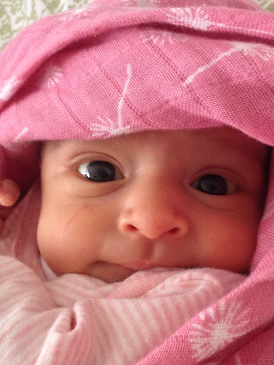 Emiliana Avalos - December 13, 2014 - January 6, 2015